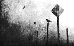 dead end by disies