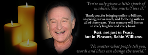 Robin Williams Tribute by LunariaCharme
