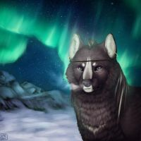 polar lights_com by MarieRock