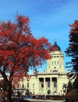 Manitoba Legislative Building in Fall by Joe-Lynn-Design
