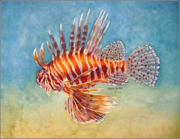 Lionfish by megillakitty