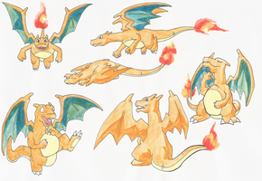 My favourite Charizard poses by Yamashita-akaDoragon