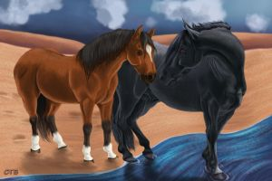 Happiness (War Horse- Topthorn and Joey) by ChellytheBean
