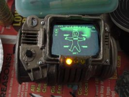 Pipboy by miss-mustang