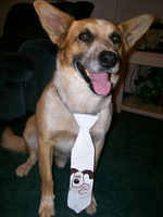 Gromit Duct Tape Tie by Starry-Blue-Wolf