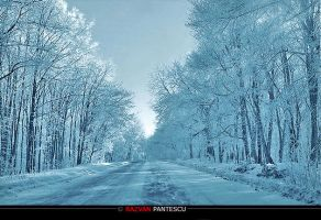 Winter roads 3 by razvanx
