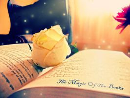 The Magic Book by amadis33