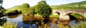 River Usk by Pokehkins