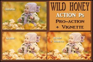 Wild honey  ACTION Ps by Tetelle-passion