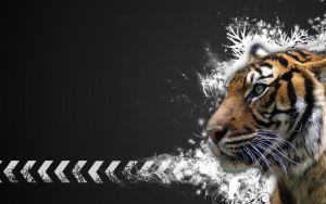 Tiger Vector Widescreen A by Sed-rah
