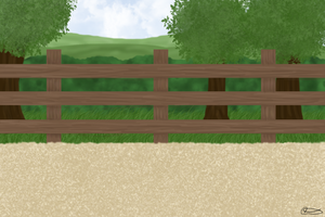 New NHS Outdoor Arena by NativeHorseStables