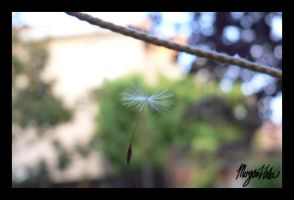 Hanging from a String by MLGn00beater