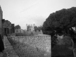 castle Lisbon 2 by angelofrock