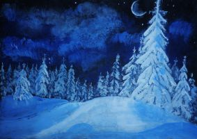 Snowy night by HelaLe
