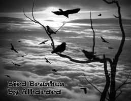 Bird Brushes 1 by Alharaca