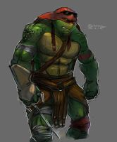 Raph 2014 by Pax77Vibiscum7Astras