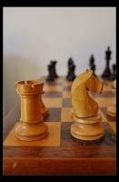 Anyone For Chess by Forestina-Fotos