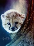 Little Mountain Lion by SPRSPRsDigitalArt