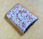 polymer clay blueberry poptart magnet by ScrumptiousDoodle