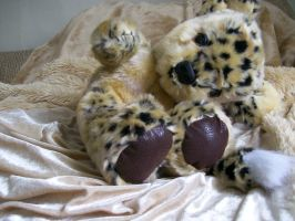 silly leopard bear by lizspit