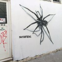 spider wall by SKITSOFRENIS