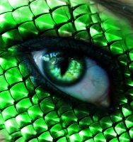 Snake Eye by BloodyRiley
