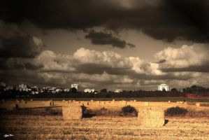 Country With The City by mayoran