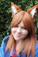Spice and Wolf by Misa-on-Wheels