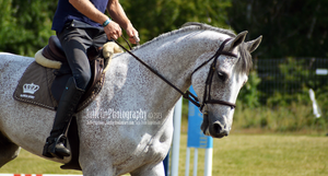 English Riding 3 by JullelinPhotography
