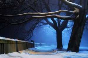night winter by P7IZA