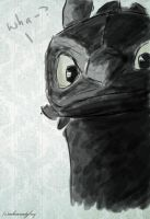 Wha--? (Toothless) by inhonoredglory