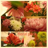 floral pack 004 by carro-stalk