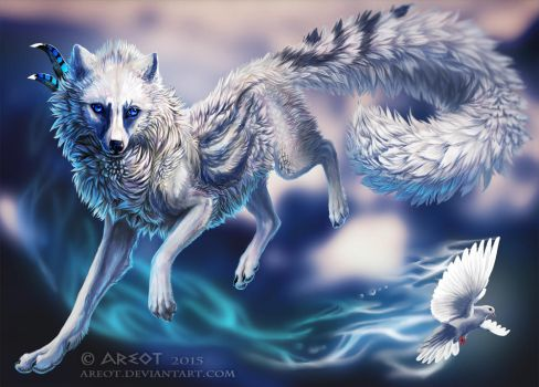 White wings by areot
