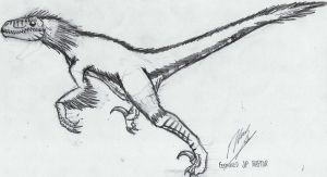 Feathered JP Raptor by xenomorph01