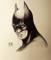 The Batman Experiment by Ace-Continuado
