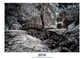 Infrared Calendar 2016 Front by vw1956