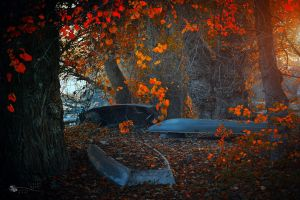 Past Glory by ildiko-neer