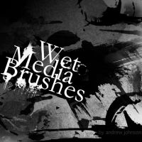 Wet Medium Photoshop Brushes by Fortelegy