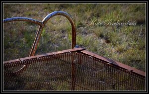 Rusty bed by Purple-Dragonfly-Art