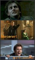 Sorcerer... Timelord... There's a difference? by Shadow-StrikeRaven