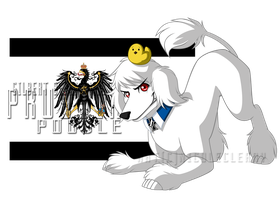 Hetalia Dogs: Prussia by snickerdoots