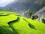 KASHMIR VALLEY by RAIS1