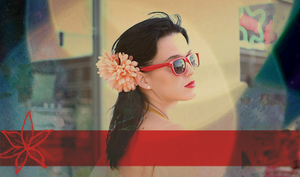 Katy Perry Banner 2 by girlnpurple88