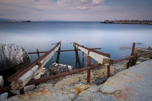 Back to the roots I by Deformity
