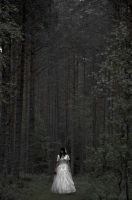 Lost in the woods by VXLPhotography
