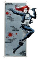 Typhoid Mary by 93Cobra