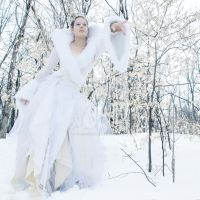 The Snow Queen by Julie-Chantal