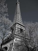 Springtime in Paris B-W by VeryBadGirl