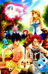 Fairy Tail by Shumijin