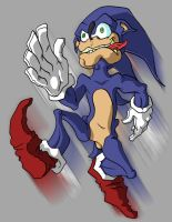 Sonic the Hurr Durr by Cannibal-Cartoonist